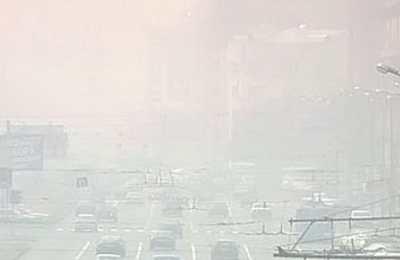 Московские власти попросили водителей отказаться от поездок