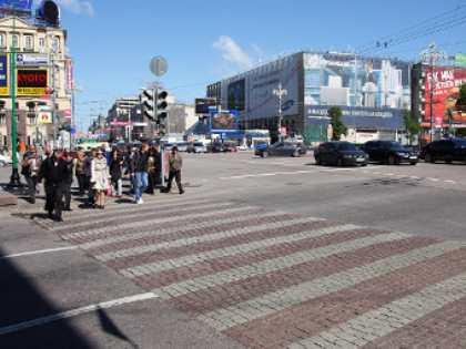 ГИБДД выведет на улицы Москвы полосатых лошадей
